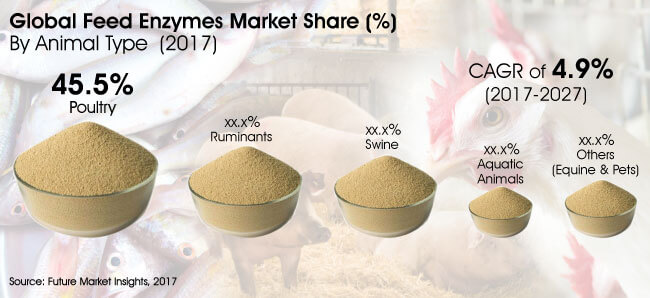 feed-enzymes-market.jpg