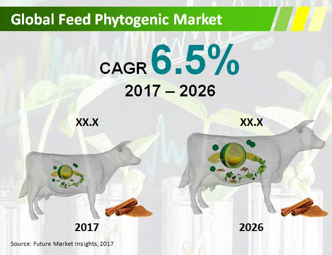 feed-phytogenic-market.jpg
