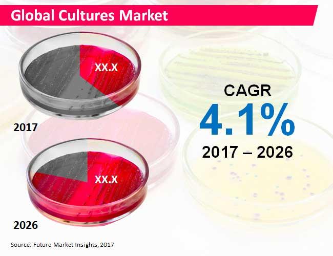 cultures market