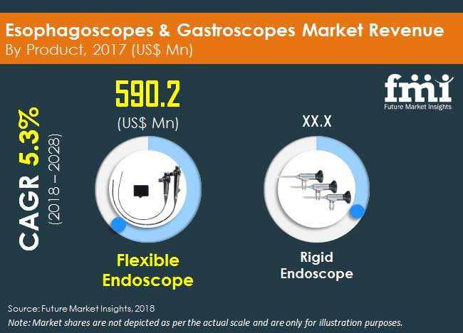 esophagoscopes gastroscopes market