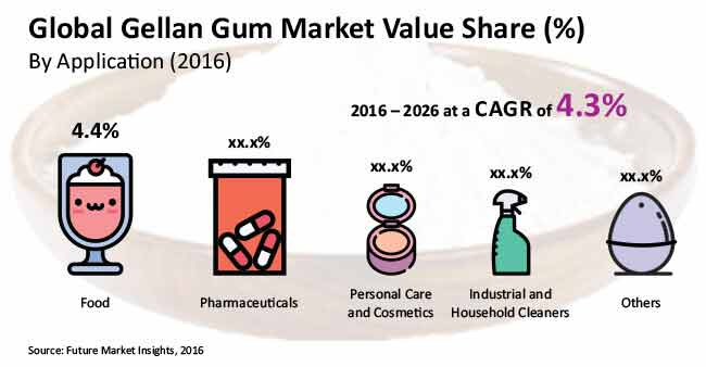 global gum arabic market About gum arabic gum arabic is extracted from the stems and branches of acacia senegal and is also popularly known as gum acacia gum arabic is primarily used as a thickener, gelling agent, stabilizer, and fat replacer in the food and beverage industry.