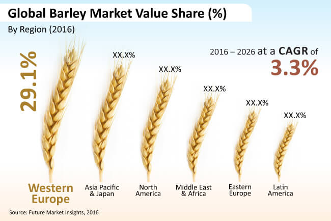 global barley market