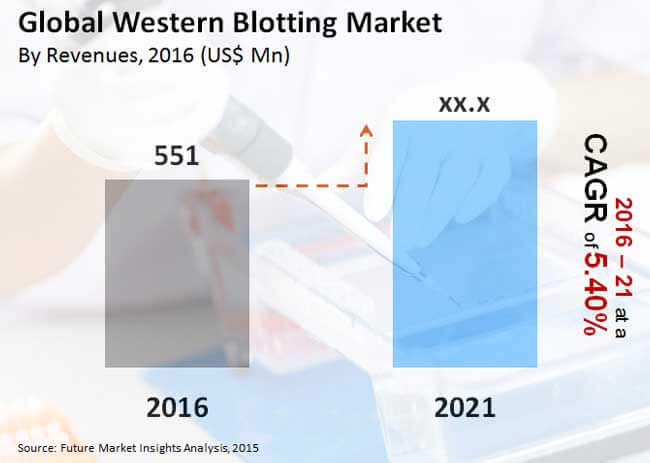 global western blotting market_Image for preview analysis