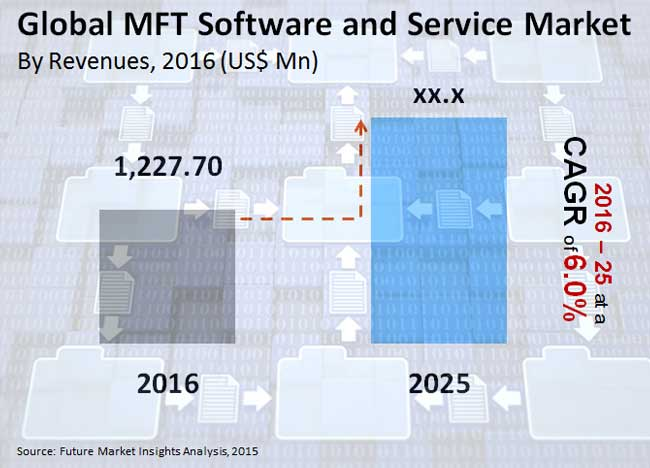 mft software and service market_image for preview analysis
