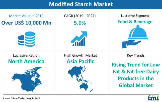 modified starch market snapshot