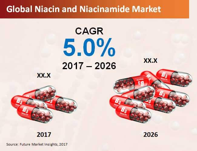 niacin and niacinamide market