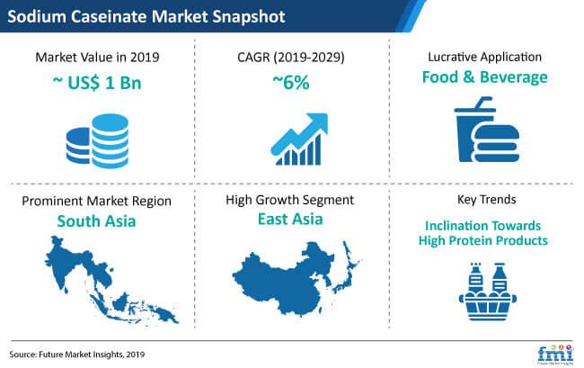 sodium caseinate market snapshot