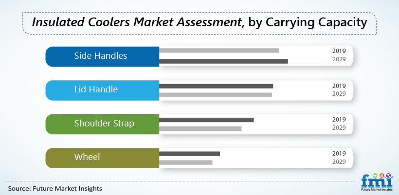 Insulated Coolers Market Assessment, by Carrying Capacity