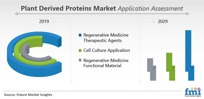 Plant Derived Proteins Market Application Assessment