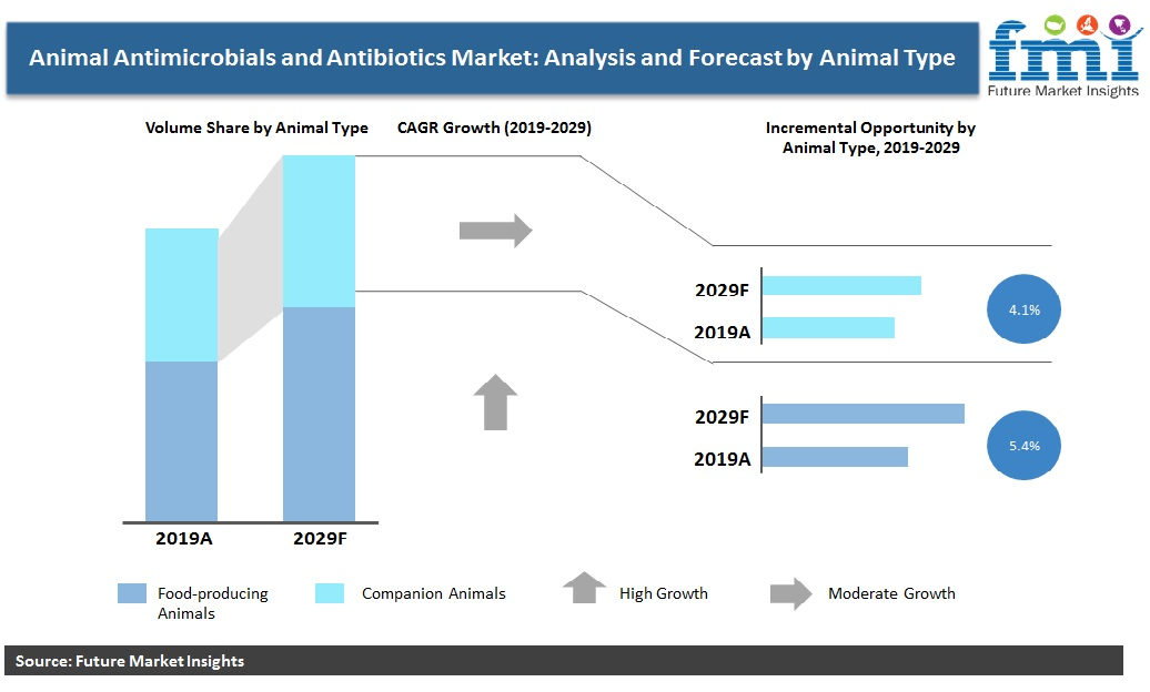 Animal Antimicrobials and Antibiotics Market: Analysis and Forecast by Animal Type