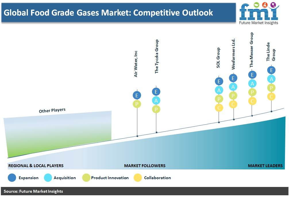Global Food Grade Gases Market: Competitive Outlook