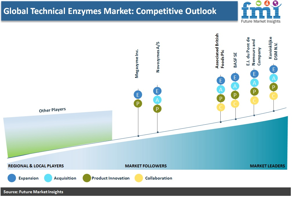 Global Technical Enzymes Market: Competitive Outlook