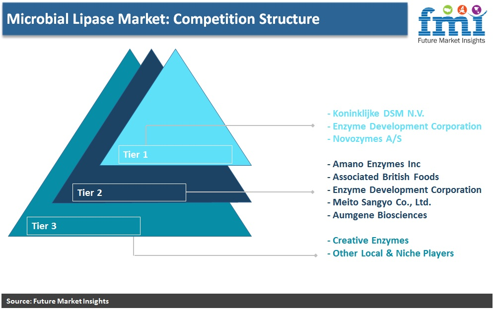 Microbial Lipase Market: Competition Structure