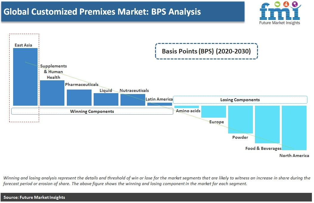 Global Customized Premixes Market: BPS Analysis