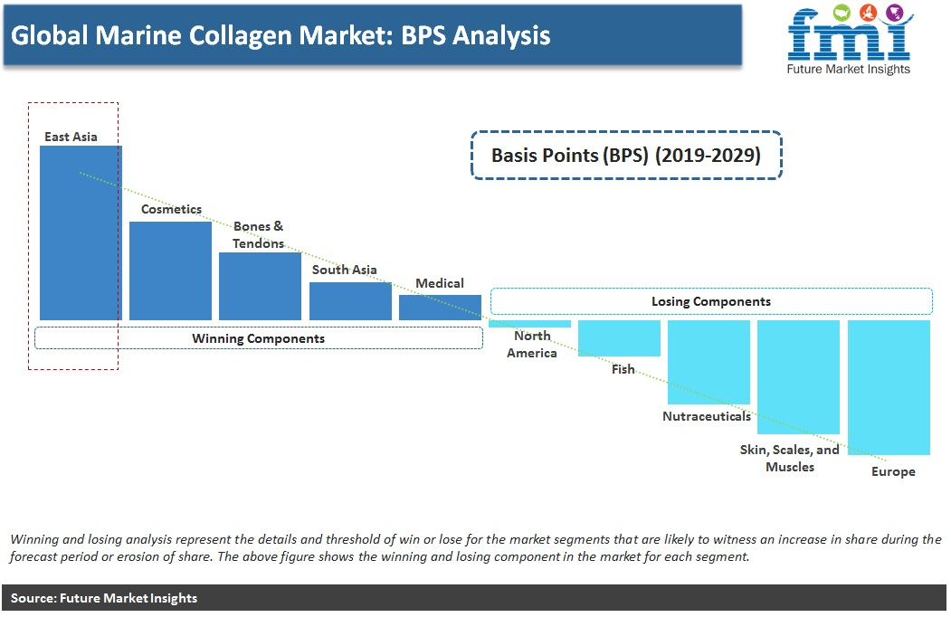 Global Marine Collagen Market: BPS Analysis