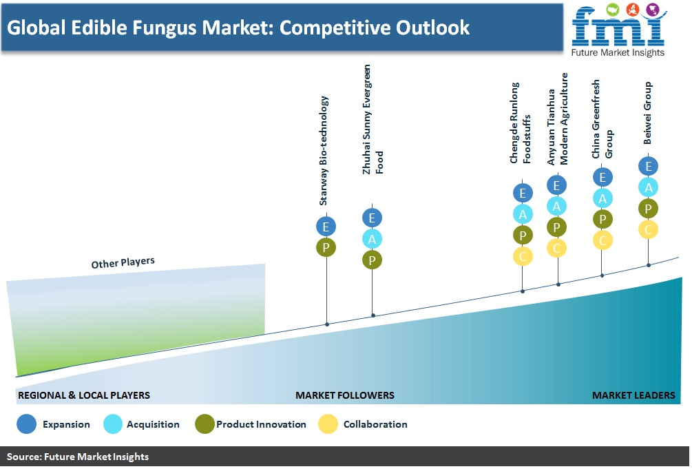 Global Edible Fungus Market: Competitive Outlook
