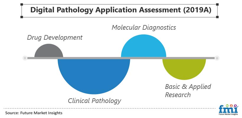 Digital Pathology Application Assessment (2019A)