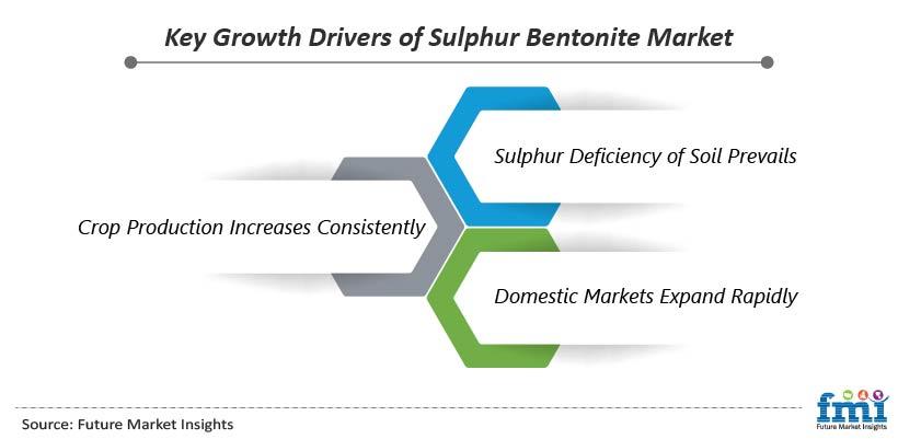 Key Growth Drivers of Sulphur Bentonite Market