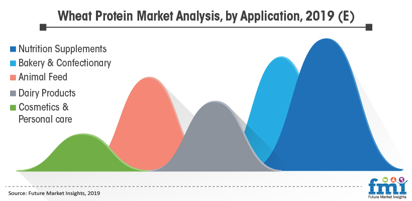 Wheat Protein Market Analysis, by Application, 2019 (E)