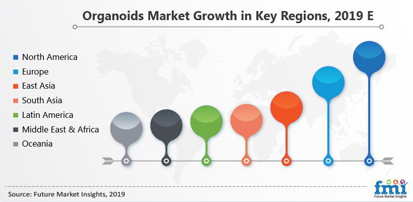 Organoids Market Analysis