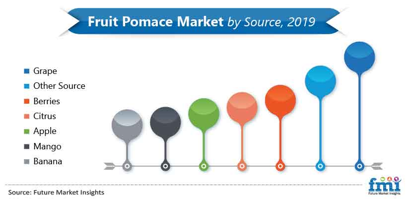 Fruit Pomace Market by Source, 2019