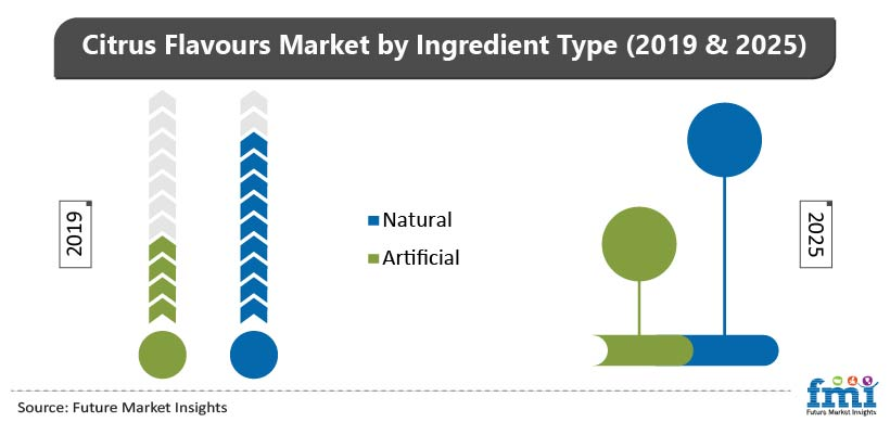 Citrus Flavours Market by Ingredient Type (2019 & 2025)