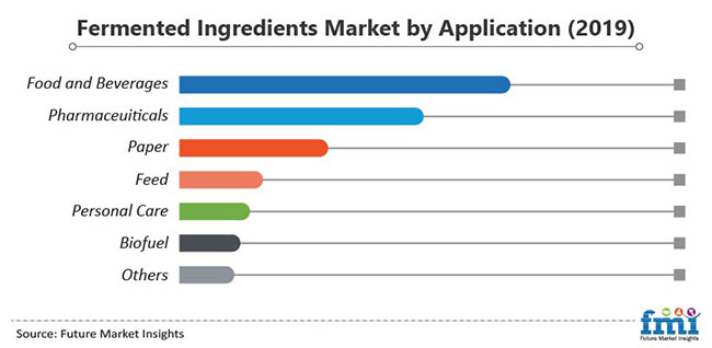 fermented ingredients market by application