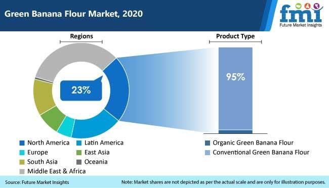 green banana flour market, 2020