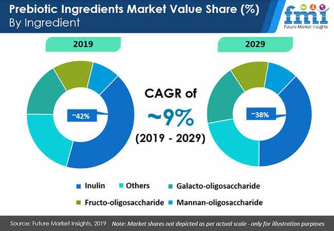 prebiotic ingredients market value share