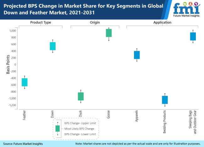 projected bps in market share for key segment in global down and feather market 2021-2031