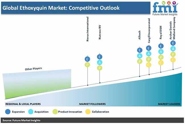 global ethoxyquin market competative outlook pr