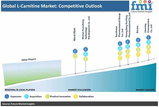 global l carnitine market competitive outlook pr