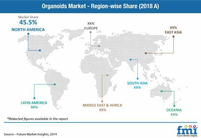 organoids market pr