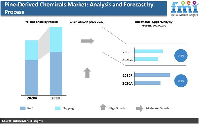 pine derived chemicals market analysis and forecast by process pr
