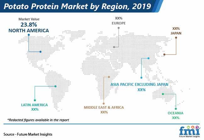 potato protein market by region pr