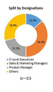 Primary Interview Splits butyl glycol market split by designations